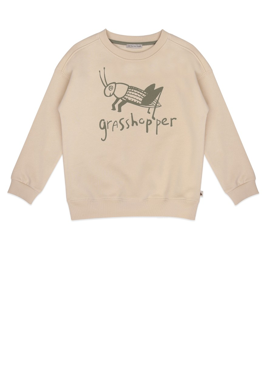 Grashopper sweater
