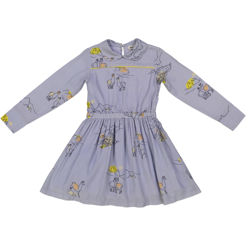 Machu Pichu dress