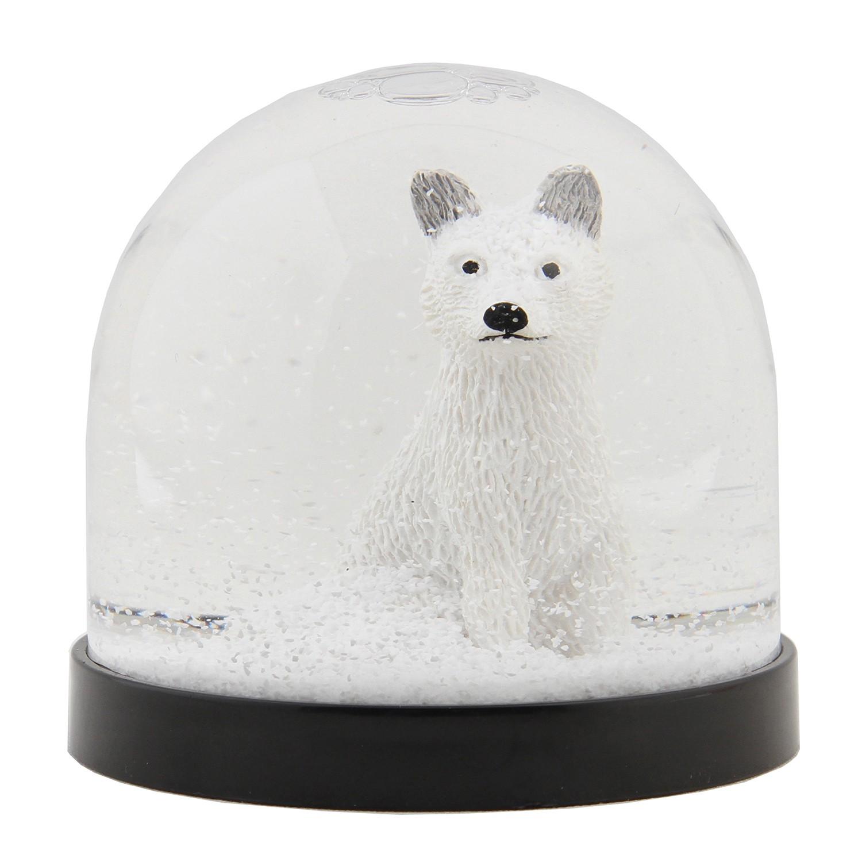 Sneeuwbal witte vos